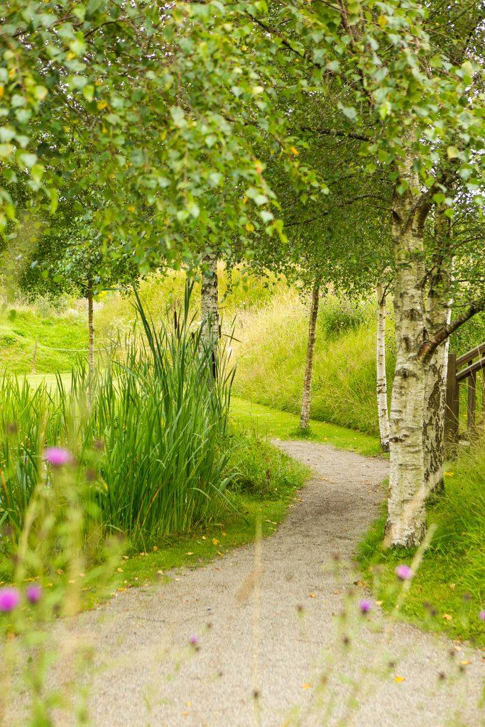 Gallery_Celtic_Garden_Samhain_Path_Brigits_Garden_Galway