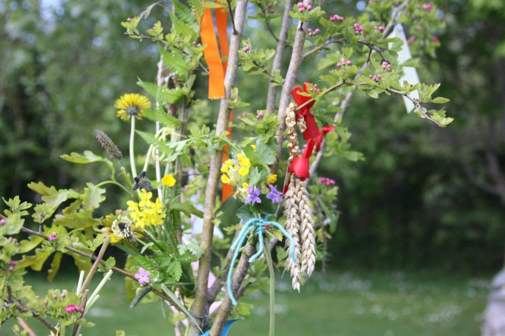 Gallery_Celtic_garden_May_Bush_Bealtaine_Brigits_Garden_Galway